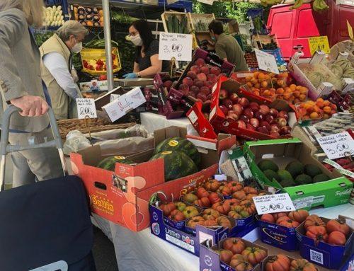 Con la strategia Farm to Fork parte la transizione europea per un'agricoltura UE con meno chimica e incentivi al biologico da 20 mld