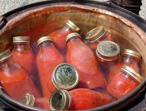 La tradizione contadina della passata di pomodoro fatta in casa
