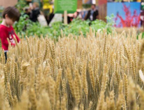 Bio Land: dal 4 maggio tre nuovi incontri informativi del progetto proposto da AIAB Calabria.